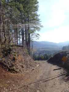 Bottom of Bonzai Downhill